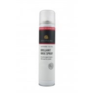 Solitaire Brillant Wax Spray für alle glatten Leder 200ml z1903